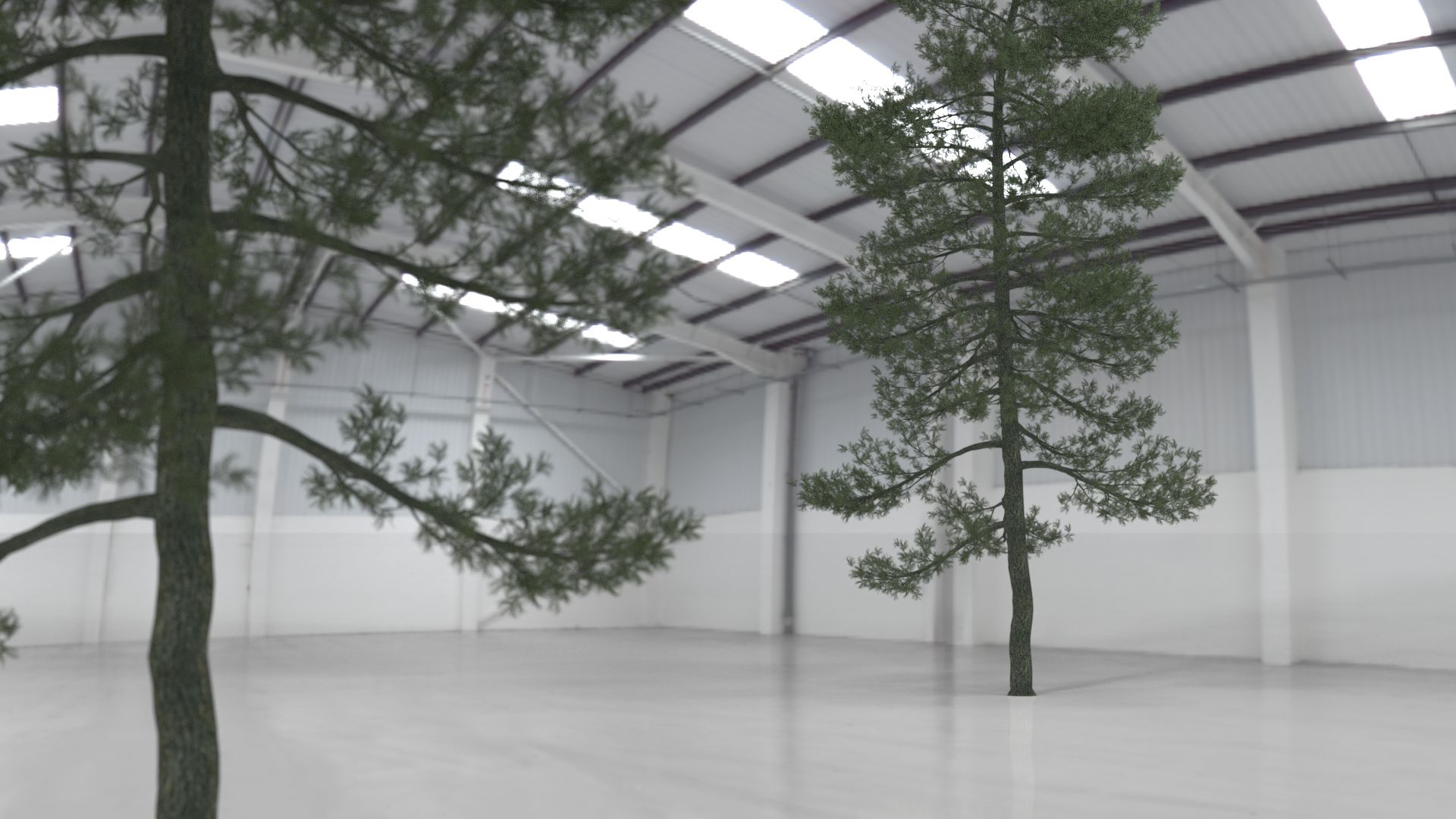 Tree_in_warehouse 2